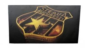 Canvas  002 Produs Oficial Steaua Bucuresti