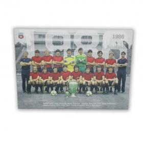 Canvas 1986 Produs Oficial Steaua Bucuresti