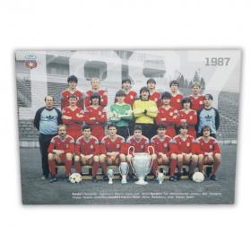 Canvas 1987 Produs Oficial Steaua Bucuresti
