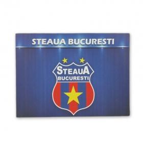 Canvas Sigla Produs Oficial Steaua Bucuresti