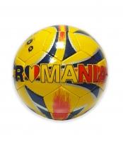 Minge PU Romania
