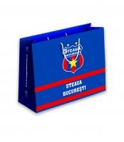 Punga Cadouri Steaua Bucuresti